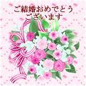 imagescabp9dy5.jpg